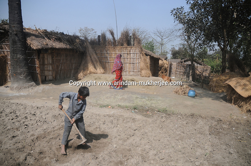 Taurez Alam a 9 year old boy ploughs a small strip of land using spade for farming. Motihari,Bihar