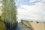 "Looking up an access path toward the overpass that carries the Park over the train tracks and connects the waterfront, or Shore, portion of the Park with the Meadows, the Grove, and the Valley portions.  At left are aspens that help provide the gateway from one ""zone"" to another.  SAM's Olympic Sculpture Park, Seattle, WA."