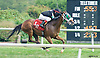 Book The Bet winning at Delaware Park on 9/29/15