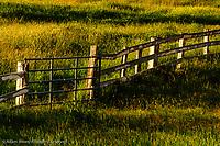 Farm fence and gate at sunrise, Palouse region of eastern Washington.