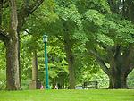Clinton Village Green. June