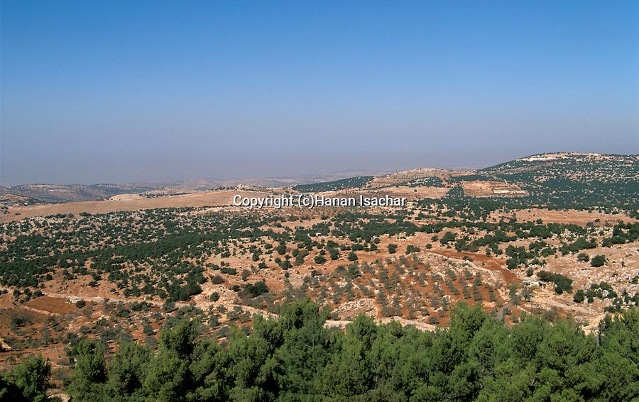 Jordan, View of the Gilead from Ajlun&#xA;<br />