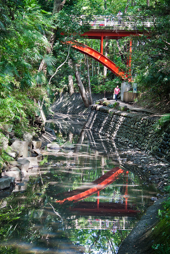 Tokyo`s Todoroki Valley with distinctive red Golf bridge reflected in the Yazawa river.