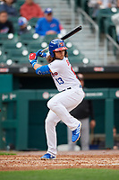 Buffalo Bisons Bo Bichette (13) at bat during an International League game against the Norfolk Tides on June 21, 2019 at Sahlen Field in Buffalo, New York.  Buffalo defeated Norfolk 2-1, the first game of a doubleheader.  (Mike Janes/Four Seam Images)