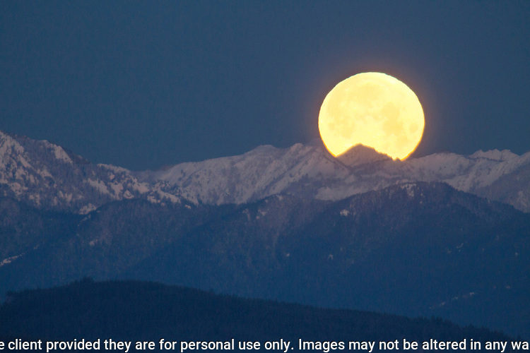 Full Wolf Moon sets behind the Olympic mountains. The Olympic Mountains is a year-round destination. In summer, visitors come for views of the Olympic Mountains, as well as for superb hiking. During the winter months the small, family oriented Hurricane Ridge Ski and Snowboard Area offers lift-serviced downhill skiing and snowboarding. Hurricane Ridge is named for its intense gales and winds. The weather in the Olympic Mountains is unpredictable, and visitors should be prepared for snow at any time of year. Jim Bryant Photo. ©2017. All Rights Reserved.Reserved.nt Photo. ©2017. All Rights Reserved.