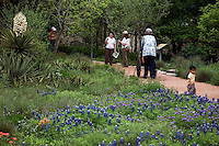 Visitors on path by bluebonnet wildflower meadow at the Lady Bird Johnson Wildflower Center, Austin Texas.