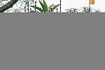 10.01.2019, Deutsche Botschaft, Pretoria, RSA, TL Werder Bremen Johannesburg Tag 08 - Besuch der Botschaft der Bundesrepublik Deutschland<br /> <br /> im Bild / picture shows <br /> <br /> Feature im Empfang der Botschaft<br /> <br /> Foto © nordphoto / Kokenge