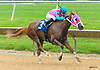Bohemian Bliss winning at Delaware Park on 6/5/2017