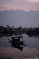A shikara, water taxi, in early morning on Dal Lake. Srinagar, Kashmir, India. © Fredrik Naumann/Felix Features