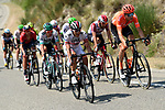 Sergio Henao (COL) UAE Team Emirates and Michael Schär (SUI) CCC Team part of the day's 34 man breakaway during Stage 17 of the 2019 Tour de France running 200km from Pont du Gard to Gap, France. 24th July 2019.<br /> Picture: ASO/Alex Broadway | Cyclefile<br /> All photos usage must carry mandatory copyright credit (© Cyclefile | ASO/Alex Broadway)