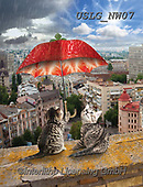 PAUL,REALISTIC ANIMALS, REALISTISCHE TIERE, ANIMALES REALISTICOS, paintings+++++NW_Fruit-Cat-F,USLGNW07,#a#, EVERYDAY ,funny photos