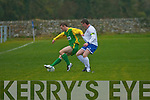 Kerry's Peter McCarthy and Limerick's Pat McGarry..   Copyright Kerry's Eye 2008