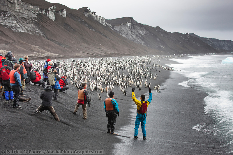 Staff of Cheeseman's Ecology tours on the beach at Baily Head, Chinstrap penguin colony.