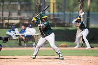 Oakland Athletics catcher Santis Sanchez (44) at bat during an Instructional League game against the Los Angeles Dodgers at Camelback Ranch on October 4, 2018 in Glendale, Arizona. (Zachary Lucy/Four Seam Images)