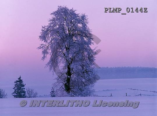 Marek, CHRISTMAS LANDSCAPES, WEIHNACHTEN WINTERLANDSCHAFTEN, NAVIDAD PAISAJES DE INVIERNO, photos+++++,PLMP0144Z,#xl#