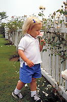 A young girl smells the white roses growing over a white picket fence. People, child, children, flowering plants, gardening. Massachusetts.