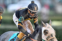 HOT SPRINGS, AR - FEBRUARY 19: Kentucky Club with jockey Ramon Vazquaz in the Southwest Stakes at Oaklawn Park on February 19, 2018 in Hot Springs, Arkansas. (Photo by Ted McClenning/Eclipse Sportswire/Getty Images)