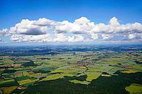 Landschaft im Herzogtum Lauenburg bei Siebenbaeumen: EUROPA, DEUTSCHLAND, SCHLESWIG- HOLSTEIN, 14.06.2014: Landschaft mit Herzogtum Lauenburg bei Siebenbaeumen