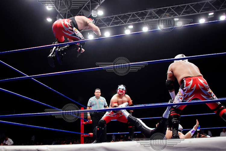 A Luchador (fighter) jumps from the ropes onto an opponent, held down by his team mates. Lucha Libre is a style of wrestling started in Mexico in 1933. The name means Free Fight, and matches tend to be focussed on spectacle and theatre with fans cheering for their favourite characters, who wear masks while jumping from the ropes, flipping opponents, and occasionally crashing into the crowd..