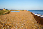 Steep shingle beach gradient at high level adjoining flood defence sea wall bank, Bawdsey, Hollesley Bay, Suffolk, England, UK