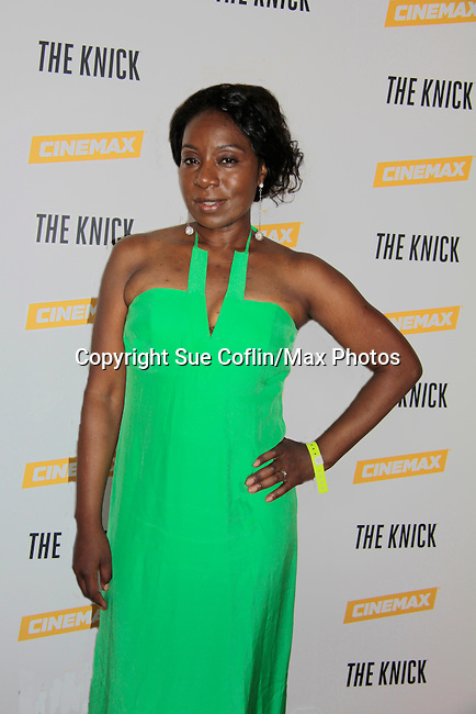 Maureen Tokeson-Martin at The Knick - on Cinemax - premiering Aug 8, 2014 - starring Andre Holland, Leon Addison Brown, David Fierro and more on July 23, 2014 at NY Academy of Medicine, New York City, New York.  (Photo by Sue Coflin/Max Photos)
