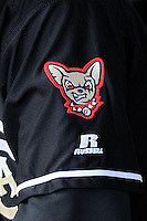 Logo of the El Paso Chihuahuas mascot.