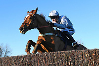 Winner of The Download The Racing Post App Novices' Chase Lisp ridden by Tom Bellamy and trained by Alan King during Horse Racing at Plumpton Racecourse on 2nd December 2019