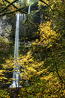 Double Falls, Silver Falls State Park, Oregon