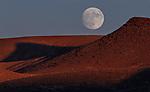 Celestial Nevada