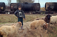Pirsaat, Azerbaijan, 02/12/2004..A young boy leads sheep past the Azerbaijan-Georgia railway which is used for transporting oil by wagon.
