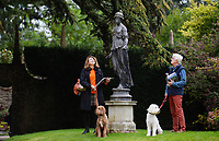 BNPS.co.uk (01202 558833)<br /> Pic: ZacharyCulpin/BNPS<br /> <br /> <br /> Peter and Kate Lingham admire a statue of 'Hygea' during the sale viewing with their dogs Robin (left) and Cara. Hygea sold for £14300<br /> <br /> The contents of one of England's finest stately homes have sold at auction for close to £1.5m.<br /> <br /> The auction of a myriad of treasures inside Athelhampton House in Dorset was hailed as one of the best country house sales for a generation<br /> <br /> The collection of fine art, furniture, sculptures, paintings and rugs was amassed by three generations of the Cooke family who have just sold the £7m Tudor mansion