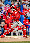 6 March 2019: Philadelphia Phillies catcher Andrew Knapp in action during a Spring Training game against the Toronto Blue Jays at Dunedin Stadium in Dunedin, Florida. The Blue Jays defeated the Phillies 9-7 in Grapefruit League play. Mandatory Credit: Ed Wolfstein Photo *** RAW (NEF) Image File Available ***