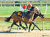 King of Versailles winning at Delaware Park on 10/12/15