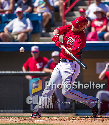 16 March 2014: Washington Nationals outfielder Bryce Harper in action during a Spring Training Game against the Detroit Tigers at Space Coast Stadium in Viera, Florida. The Tigers edged out the Nationals 2-1 in Grapefruit League play. Mandatory Credit: Ed Wolfstein Photo *** RAW (NEF) Image File Available ***