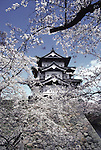 The historic landmark of the Hirosaki Castle provides a backdrop of many pictures at the Cherry Blossom Festival held in Oyo Park near Hirosaki Castle in Aomori Prefecture in Northern Honshu, Japan. Over 1500 cherry trees come into bloom from late April to Early May. (Jim Bryant Photo).......