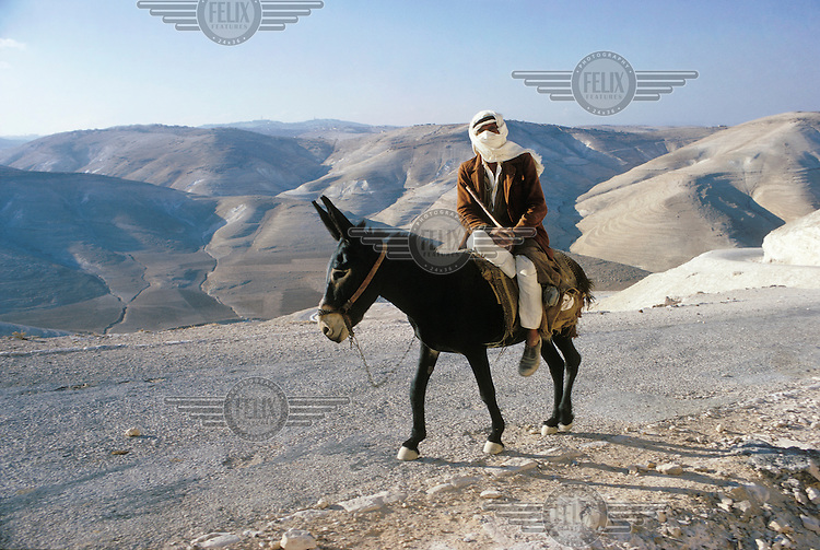 Palestinian farmer on the back of a donkey.