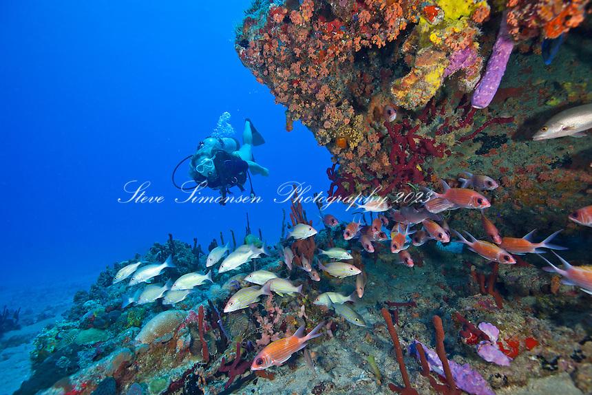 Savannah Goodman .Wreck of The Rhone.Salt Island, BVI