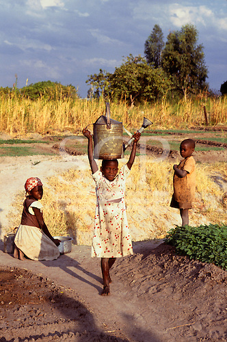 Tembe Village, Tanzania, Africa. Young girl carrying watering can on her head, employed to water crops.