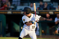 Bradenton Marauders Travis Swaggerty (12) at bat during a Florida State League game against the Fort Myers Miracle on April 23, 2019 at LECOM Park in Bradenton, Florida.  Fort Myers defeated Bradenton 2-1.  (Mike Janes/Four Seam Images)