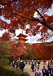 People visiting Kiyomizu-dera Buddhist temple with Sanjunoto pagoda in the background in a colorful fall scenery, Kyoto, Japan 2017.