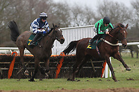 Race winner Edmund Kean ridden by Conor O'Farrell (L) chases down Seedsman ridden by Sam Twiston-Davies in the European Breeders Fund National Hunt Novices Hurdle
