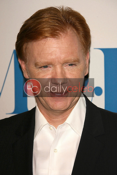 David Caruso<br />