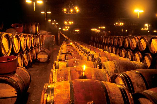 Gironde. Les caves de Mouton Rothschild à Paullac. *** Mouton Rothschild cellar wine. Pauillac, Gironde.