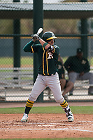 Oakland Athletics catcher Santiago Chavez (66) at bat during a Minor League Spring Training game against the Chicago Cubs at Sloan Park on March 13, 2018 in Mesa, Arizona. (Zachary Lucy/Four Seam Images)