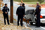 Manchester canine police Officer Rob Johnson lets his canine partner Dibbs back into a vehicle after searching an area on Woodbridge St. in Manchester on Friday near the scene of a robbery at Enfield Federal Savings Bank. (Adrian Keating/Journal Inquirer)