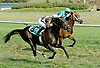 Safety Valve winning at Delaware Park on 8/31/10