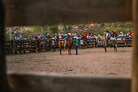 Jaripep or rodeo in the ejido cuquiarachi. Cuquiarachic, belonging to the municipality of Fronteras, Sonora. Daily life and cowboy culture in the towns of northern Mexico. (Photo: LuisGutierrez / NortePhoto.com)<br /> <br /> <br /> jaripeo o rodeo en el ejido cuquiarachi. Cuquiarachic, perteneciente al municipio de Fronteras, Sonora. Vida cotidiana y cultura vaquera en los pueblos del norte de Mexico.  (Foto: LuisGutierrez / NortePhoto.com)