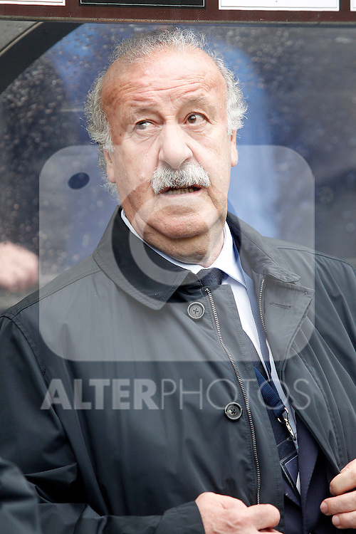 Spain's coach Vicente del Bosque during friendly match. June 1,2016.(ALTERPHOTOS/Acero)