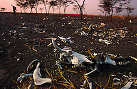 "Scorched Earth .In February, Government of Sudan (GOS) dropped bombs from an Antonov--wiping out an entire village and all of the livestock.  They target livestock because they know it is the last resource in times of famine.  The goal of the GOS is to force southerners from their villages into garrison towns where the people can be controlled.  They also kidnap the children...Story Summary:.Sudan, the largest country in Africa, hosts a civil war between the Islamic North and the African South that has the highest casualty rate of any war since World War II...Two and a half million people have been killed in this insidious conflict.  It drags on because Southerners have no voice, and the Northerners have engineered ""The Perfect War"" where none of their people are killed...The North forces people out of the South by bombing them, burning their crops, and harassing them with gunships. They abduct their children and draft them to fight with the Northern army--forcing southerners to fight their own brothers...This story is particularly interesting now because there is a small window for peace in a civil war that has been dragging on since the end of colonial rule.  The war has always been about tribal issues and ideology... but more than that, it is about resources.  This clash over resources may bring peace.  The North controls the pipeline and the only port, and the South controls the land...The story of Sudan has always been the continual transference of wealth from the resources of the south to the elite few who live in the deserts of the north.  And the sucking sound in the middle of the country is from the corrupt government in northern Khartoum..."