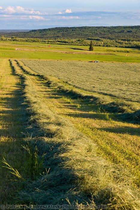 Hay field in fairbanks - Interior women s health fairbanks ak ...